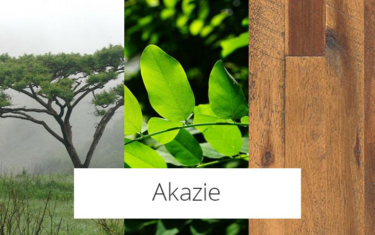 Akazie