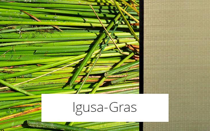Igusa-Gras