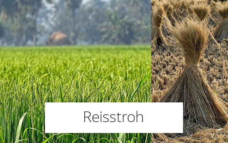 Reisstroh